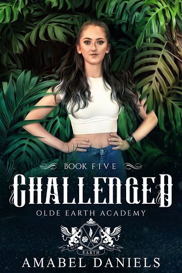 BK1.3 Challenged E-Book Cover.jpg