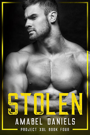 BK4 Stolen E-Book Cover.jpg
