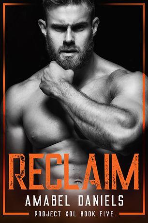 BK5 Reclaim E-Book Cover.jpg