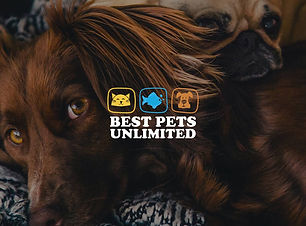 Best Pets Unlimited - Cover Page.jpg