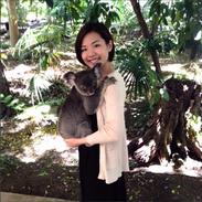 so cute💋love koalalala~ #koala#lonepine#brisbane