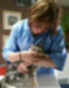 iedere kat is welkom bij Trimsalon Cats Haircare in Almere