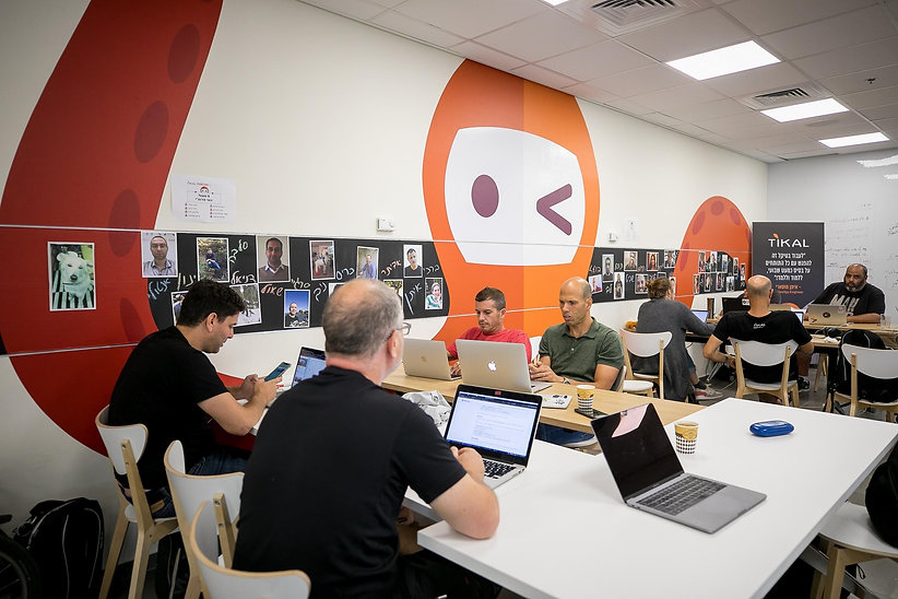 Tikal-office-105_(Copy).jpg