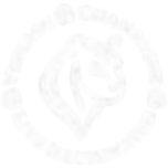 Satori-Le-Vent-logo-03.png