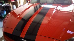 Viper Stripes