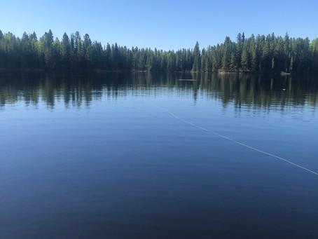 Monday May 3, 2021 - Beaver Lake
