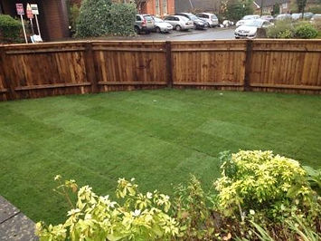 Small Boundary fencing