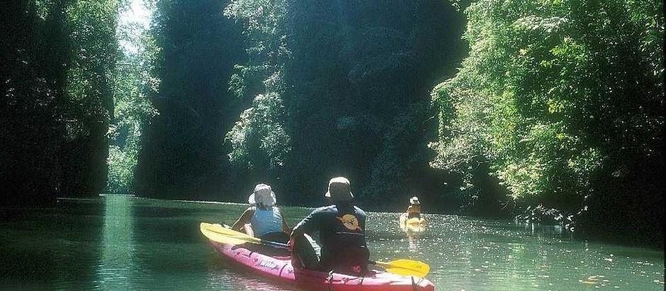 Hidden Worlds: Sea Kayaking in Thailand's Phang Nga Bay