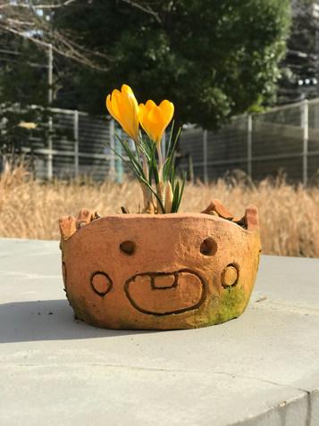 笑う植木鉢