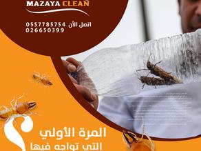 كيف اتخلص من الحشرات في المنزل بنفسي ؟
