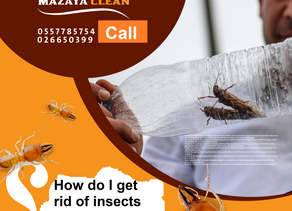How do I get rid of insects in the house myself?