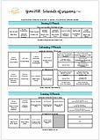 YCMI 2020 Session overview pdf thumbnail