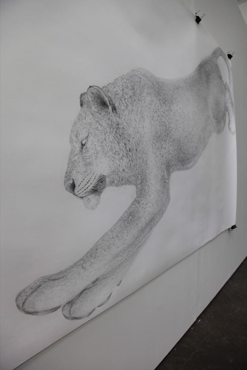Leijona ja väri
