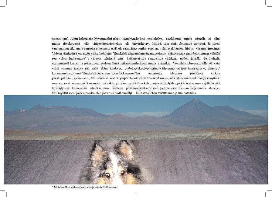 21.12 vihko 16 sivua-page-006.jpg