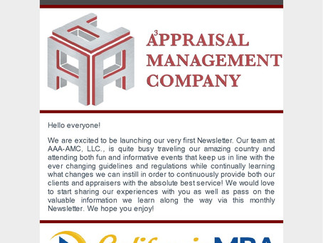 AAA-AMC, LLC's First Newsletter!