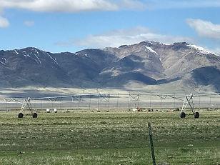 17880 Grass Valley Rd.jpg