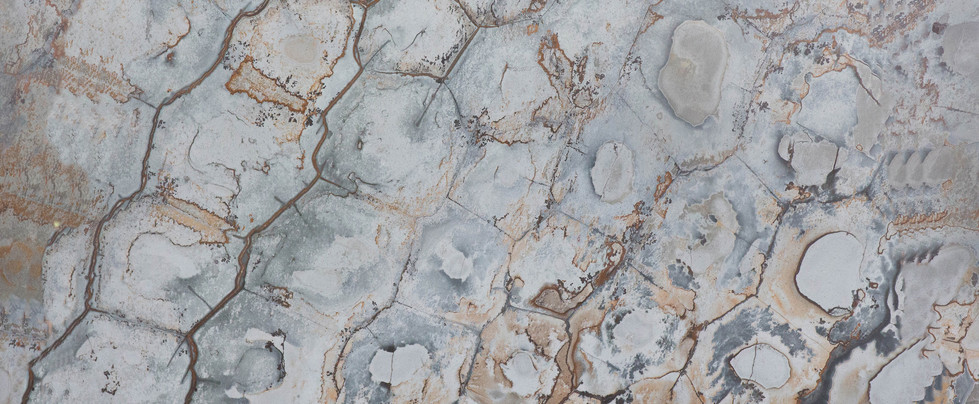 brazilian fossil - chapa .jpg