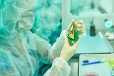 scientist-researching-viruses-NESA952.jp