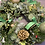 Thumbnail: Classic Christmas Memorial Wreath