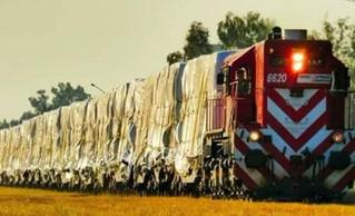 Primer cargamento de alfalfa en tren