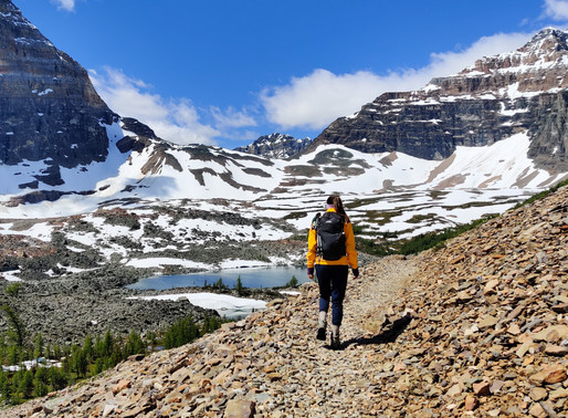 5 Essentials For a Day Hike