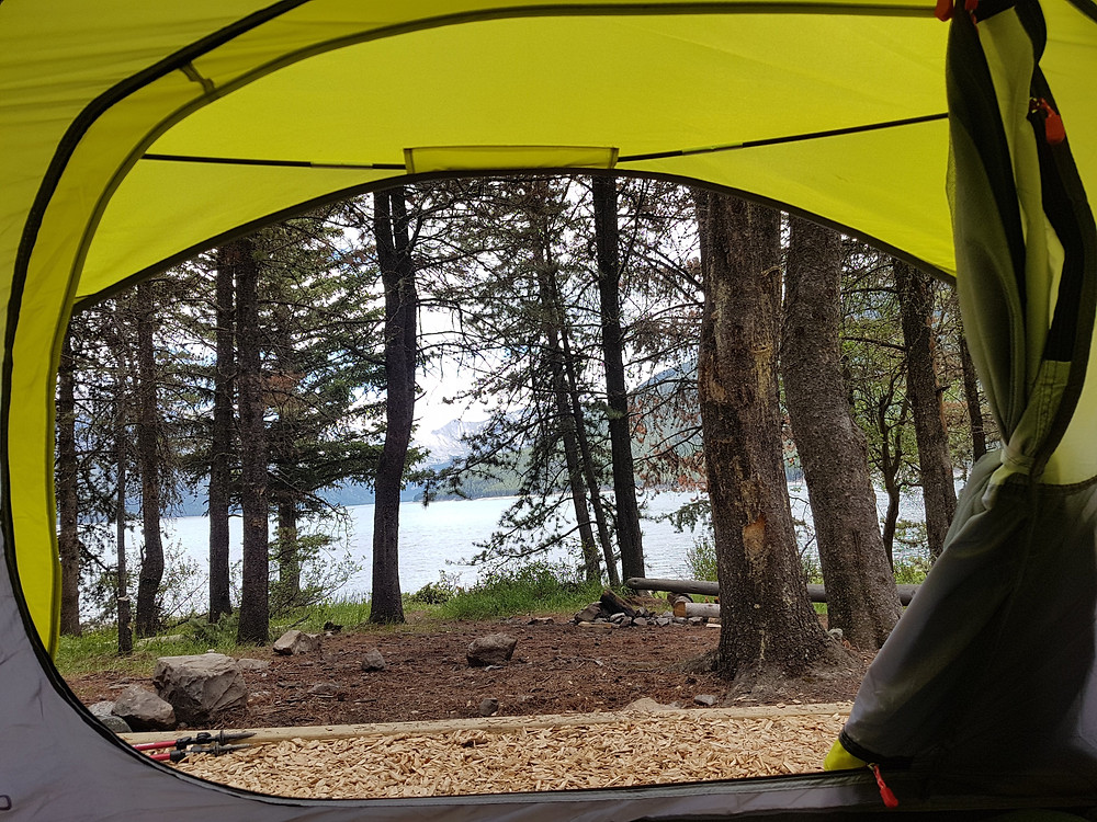 Looking out of open neon tent sitting in a campsite in forest near the shore of alpine lake in Yellowstone National Park