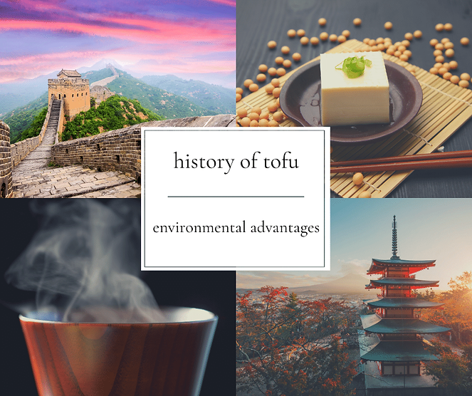 history of tofu and environmental advantages of a plant based diet