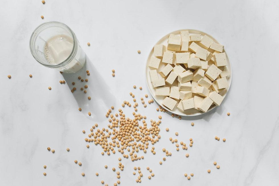 photo-of-tofu-soybeans-and-soy-milk-agai