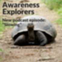 Awareness Explorers podcast Episode 2: Slowing