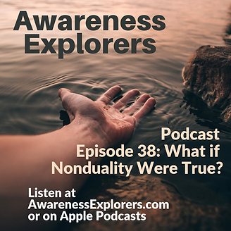 AE Episode 38 What if Nonduality Were Tr