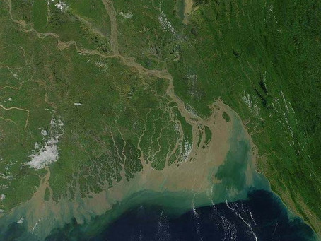 The River Delta