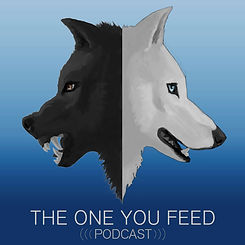 The One You Feed podcast interview with Brian Tom O'Connor
