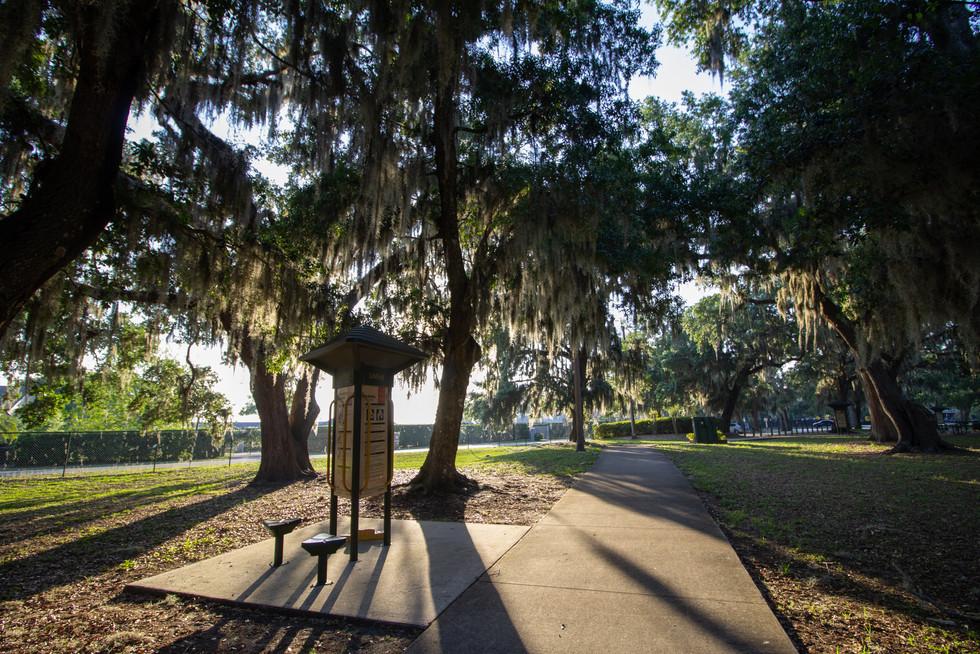 Warren Park | Orlando Nature Photography | Sunshine Photography