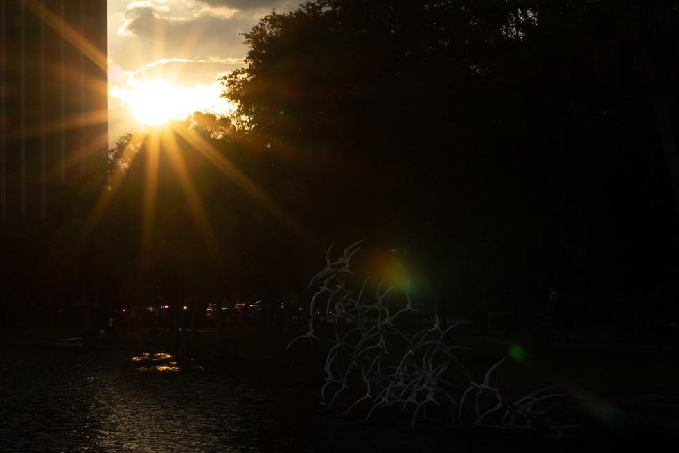 Downtown Orlando Sunset | Orlando Nature Photography | Sunshine Photography