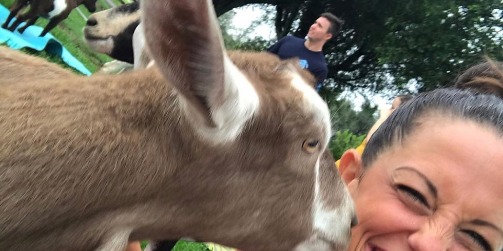 Broward - Yoga with Little Goats - RESCHEDULED