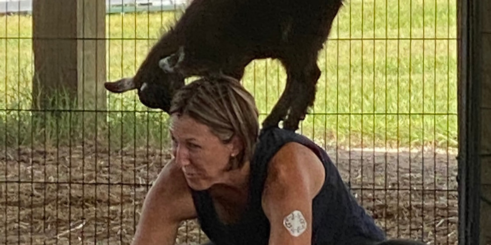 Yoga with Little Goats - You Farm SOLD OUT