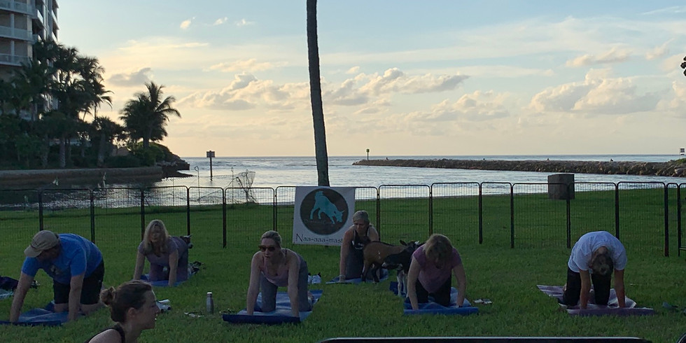 Yoga With Little Goats - on the water - SOLD OUT
