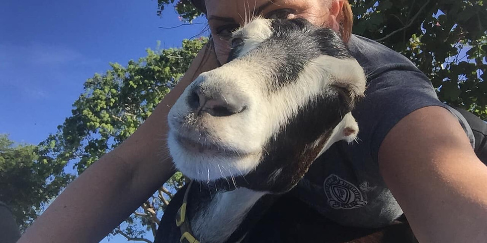 Yoga with Little Goats - Broward -10:30