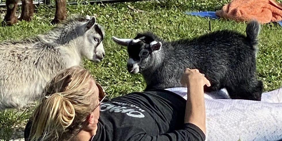 Yoga and Brew with Little Goats -High Springs Brewery - 12:30