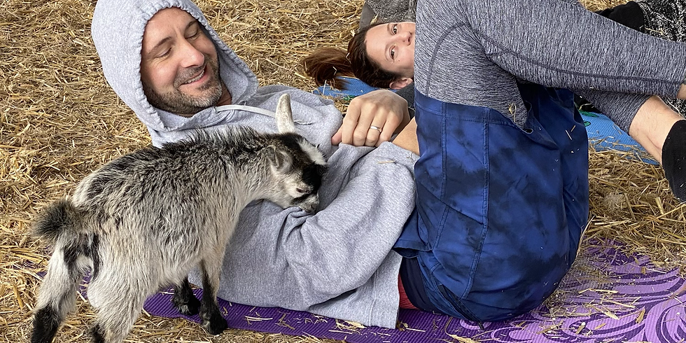 Yoga with Little Goats - Palm Beach - 9:00 SOLD OUT