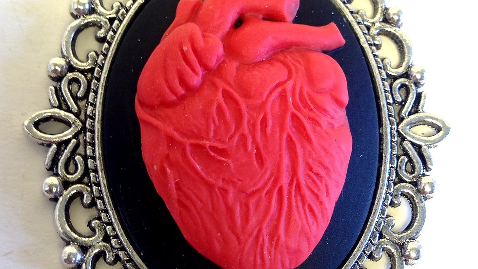 Red Anatomica Heart Cameo on Ribbon