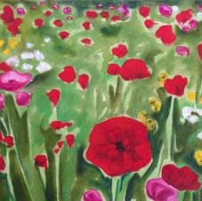 Hidden Poppy Field