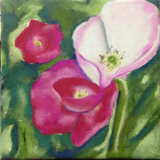Pink Poppy Abstract