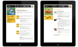 Website - Secondary Pages
