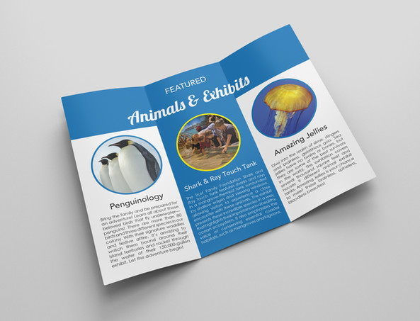 Assignment: Brand Identity | Desktop Publishing