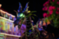 Personal Project   Villains After Hours creative theme park photography