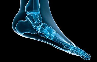 Foot Care and Orthotics