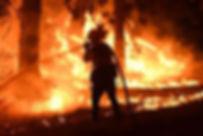 bush fire.jpg