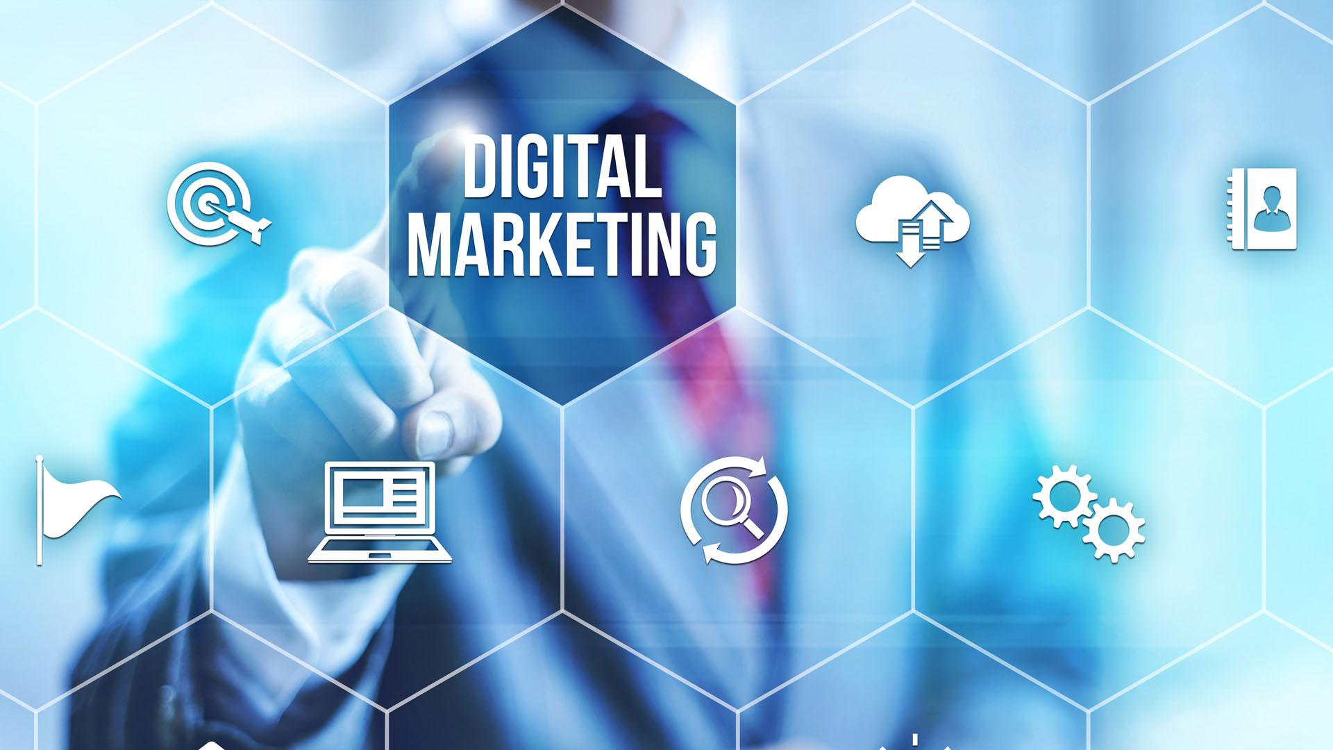 Marketing & SEO Services