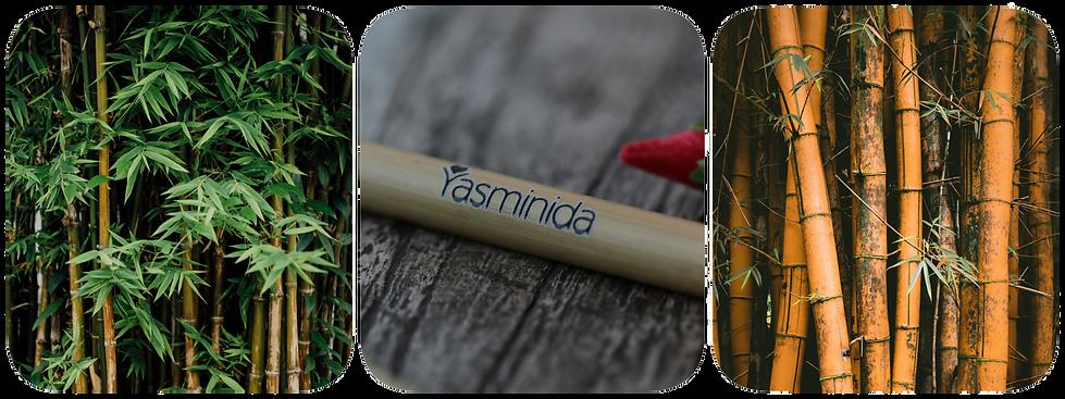 Passion - Slide 1 - Yasminida.png